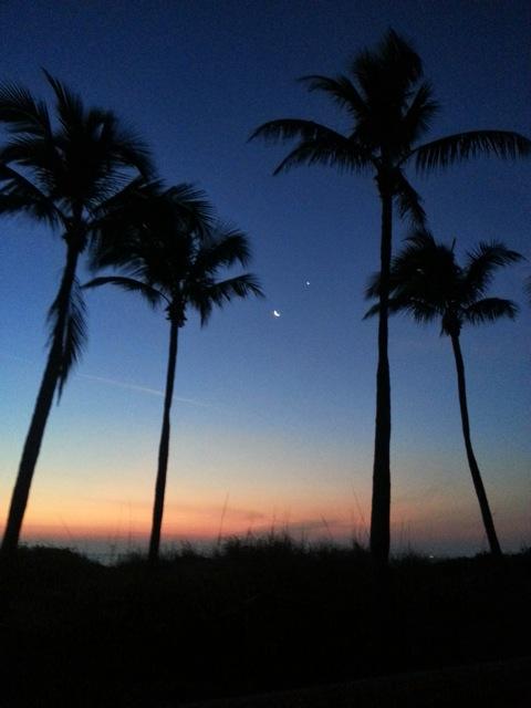 Moon and Venus seen from Hawaii on February 26, via our friend Zarita.  Thank you, Zarita!