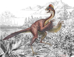 Image byMark Klingler, Carnegie Museum of Natural History.