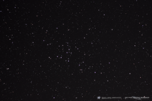 Scattered stars, with a few dozen closer together.