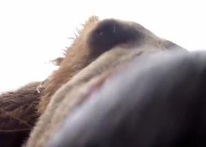 Video still via Brad Josephs