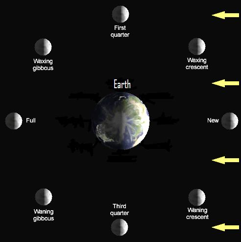 Half-lit Earth and moon, showing 8 labeled positions of moon around Earth.