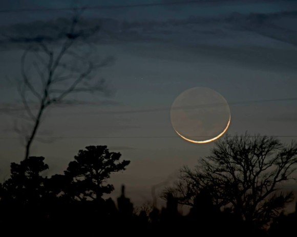 A very slim crescent moon, with the rest of the moon faintly glowing; view over bare treetops.