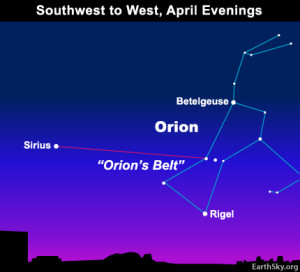 Sirius, the brightest star of nighttime, predominates over the western half of sky at nightfall. Orion's Belt points to Sirius, not Jupiter! Read more