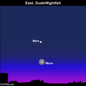 The red planet Mars shines close to the full moon all night long.