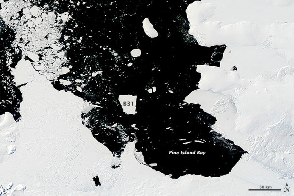 In the coming months, B31 is expected to leave the Amundsen Bay and enter the waters of the Southern Ocean.  Since southern winter is approaching, it'll be dark over that area, and the iceberg will be harder to track.