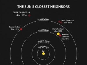 suns-neihbor