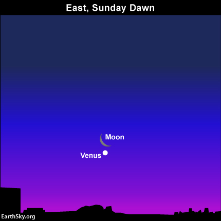 The Camelopardalid meteor shower may have been a bust, but Sunday morning's view of Venus and the moon will not disappoint!