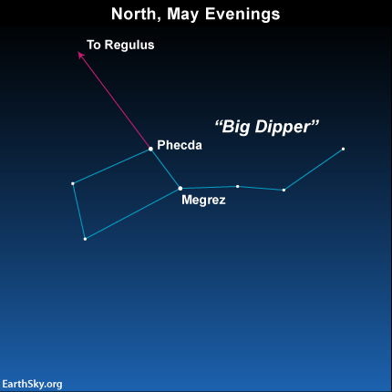 The Big Dipper bowl stars Megrez and Phecda serve as your faithful pointer stars to Regulus, the heart star of Leo the Lion.