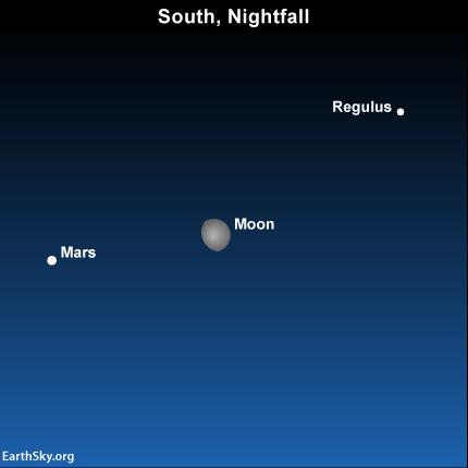 Moon Phases May 2014