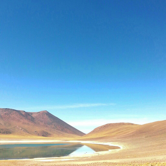 Chilean Altiplano via Flickr user Miquel Vera Leon.