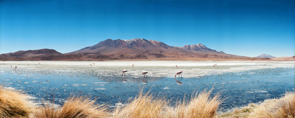 The Altiplano, via Flickr user Lenta Moebiusa