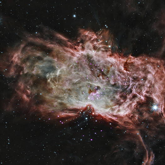 This is NGC 2024, found in the center of what's called the Flame Nebula. It's located about 1,400 light years from Earth. In this image, X-rays from Chandra are seen as purple, while infrared data from NASA's Spitzer Space Telescope are colored red, green, and blue.  Credit: X-ray: NASA/CXC/PSU/K.Getman, E.Feigelson, M.Kuhn & the MYStIX team; Infrared:NASA/JPL-Caltech