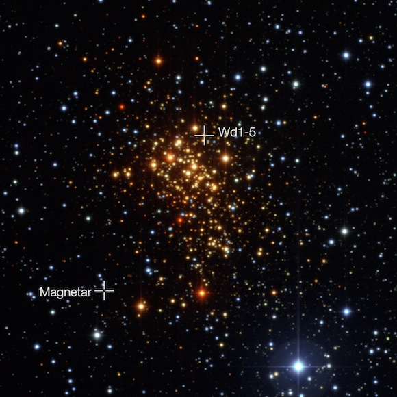 The star cluster Westerlund 1 and the positions of the magnetar and its probable former companion star