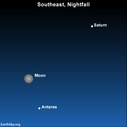 2014-june-11-saturn-antares-moon-night-sky-chart