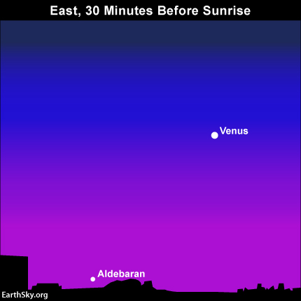 You'd probably need binoculars to catch the star Aldebaran below the dazzling planet Venus in June 2014.