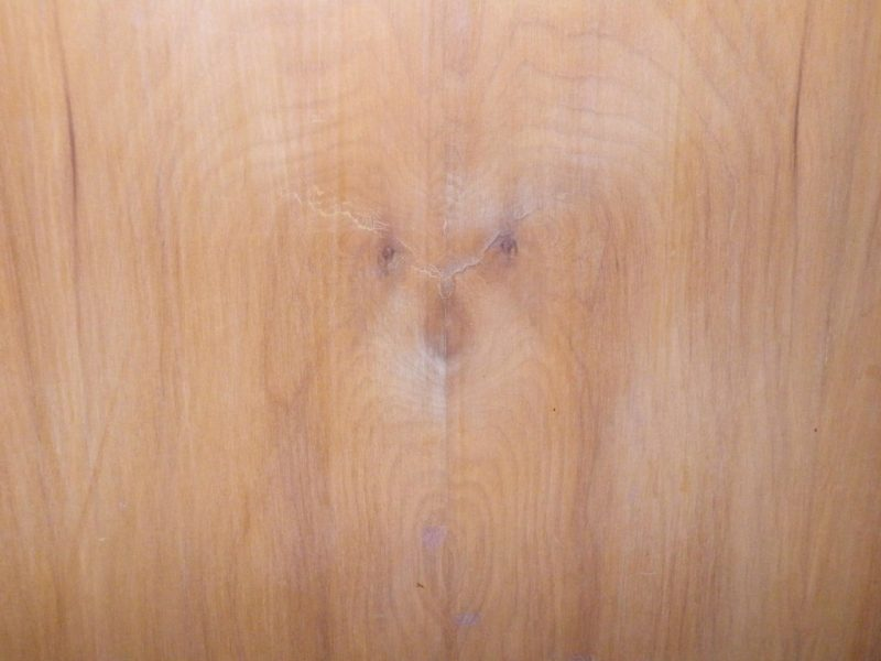 Pareidolia of dog on closet door by Chad Johns.