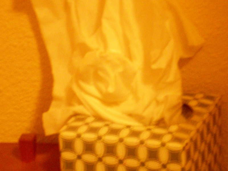 What can you see in the folds of this tissue? Many people will not see anything. It depends, in part, on the innate ability to see patterns, and in part on the natural inclinations and interests of the viewer. In some cases the image will immediately pop out, while for some folks it will come after a little close examination, and others may not be able to see it at all.