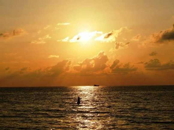 From Palm Beach, Florida, by Claribel Cruz.