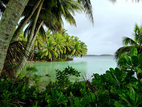 Strawn Island Lagoon. Image Credit: Laura M. Beauregard, USFWS.