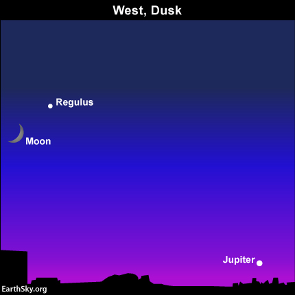 Jupiter sits low beneath the moon and Regulus after sunset July 1 Read more