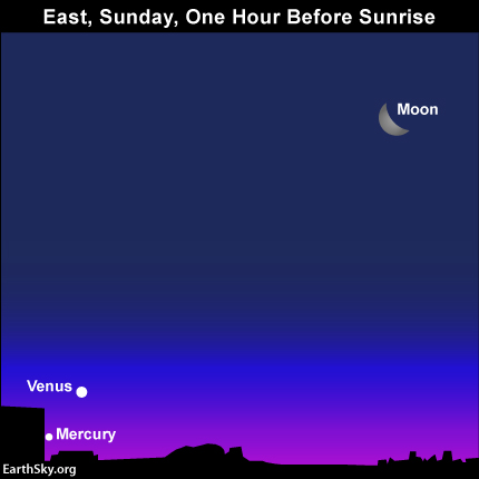 The horns of the waning crescent moon point away from Venus and Mercury, whereas the bow of the moon points toward Venus and Mercury.