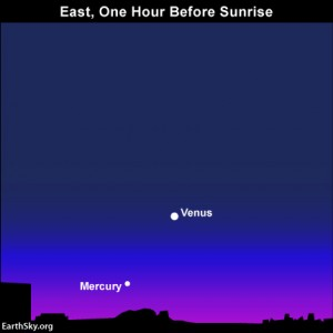 Are you an early riser? Look for the planets Venus and Mercury in the east as darkness gives way to dawn.