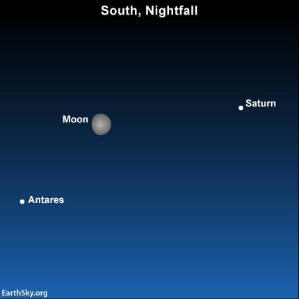 2014-july-8-saturn-antaras-moon-night-sky-chart