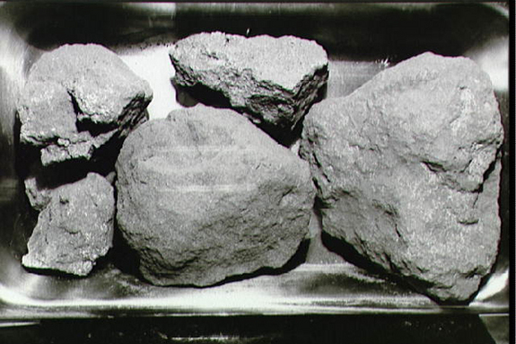 Five irregular gray rocks of different sizes.