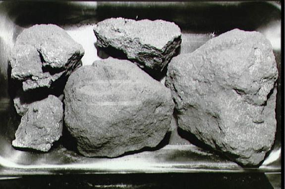 Five irregular gray rocks of different sizes.