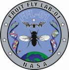 fruit-fly-lab-ISS
