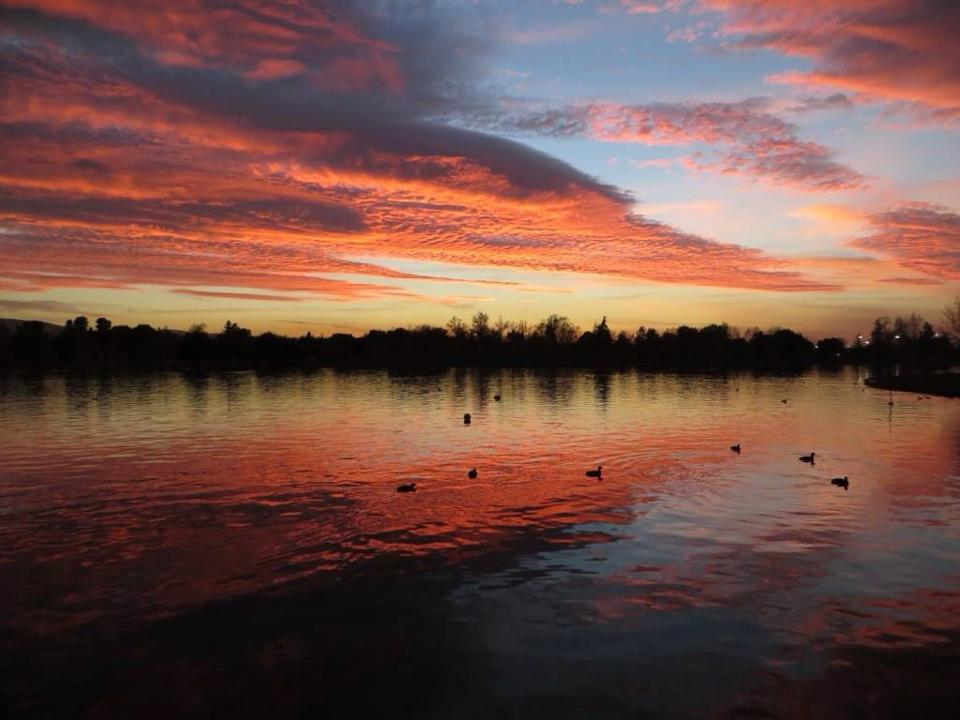 Streaming pink clouds reflected in lake with ducks.