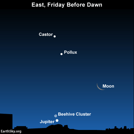 2014-aug-21-text-jupiter-beehive-castor-pollux-night-sky
