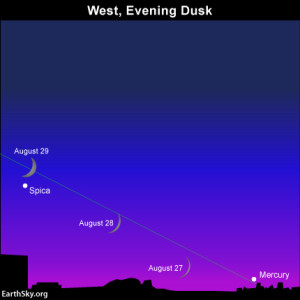 The waxing crescent moon shines close to Mercury on  August 27 and Spica on August 28 and August 29