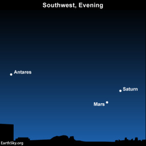 Northerly latitudes can still spot three bright beauties - the star Antares, plus the planets Mars and Saturn - lighting up the southwest sky at nightfall and early evening