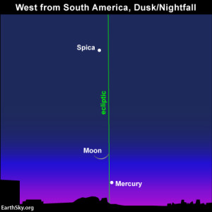 Because the ecliptic intersects the horizon almost vertically at dusk and nightfall in the Southern Hemisphere, the moon and Mercury appear higher up after sunset and stay out later after the sun goes down.