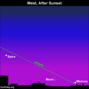 The narrow angle  of the ecliptic at dusk and nightfall means the moon and Mercury set soon after sunset at northerly latitudes