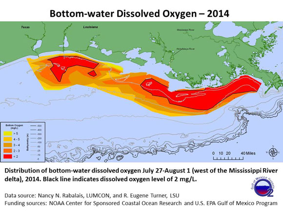 Size of the 2014 dead zone in the Gulf of Mexico. Image via LUMCON and Louisiana State University.