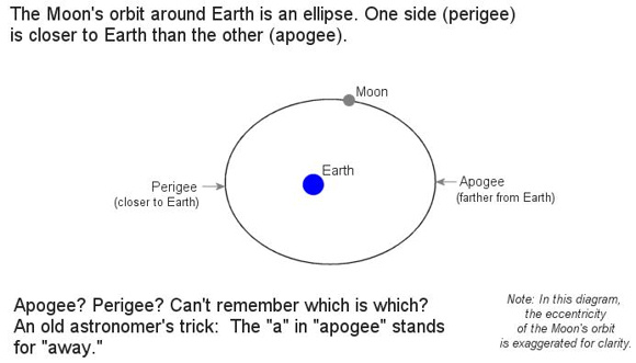Image credit: NASA. The moon's orbit is closer to being a circle than the diagram suggests. Successive new moons at the vicinity of apogee make for a longer-than-average lunar month. Successive new moons at the vicinity of perigee make for a shorter-than-average lunar month.