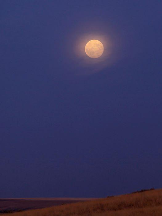 August 10 supermoon over Odessa, Washington by Susan Gies Jensen.