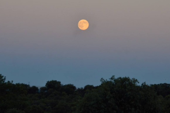 August 10 supermoon over Madrid, Spain by Annie Lewis.