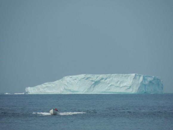 """A """"table"""" iceberg off the coast of Change Islands, August 4, 2014.  Photo credit: Bonnie J. McCay"""