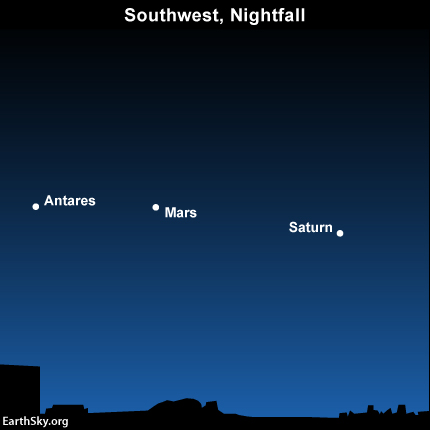 Look for the red planet Mars between the ruddy star Antares and the golden planet Saturn in the southwest sky at nightfall and early evening