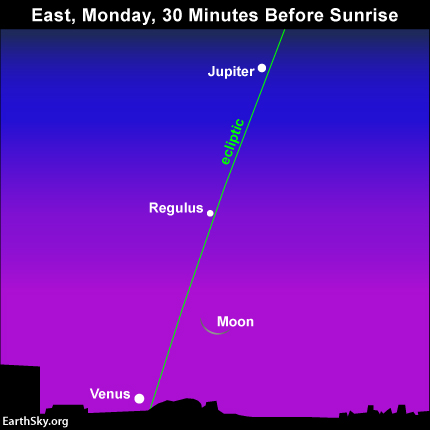 It' might be quite difficult to see the waning crescent moon and the planet Venus in the harsh glow of dawn on Monday, September 22.  Binoculars could come in handy!