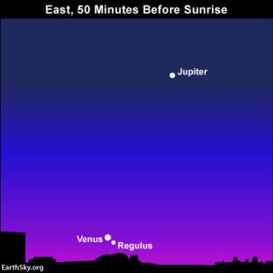 Venus and Regulus pair up below Jupiter on September 5 Read more