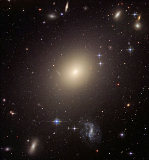 This image from NASA's Hubble Space Telescope shows the diverse collection of galaxies in the cluster Abell S0740 that is over 450 million light-years away in the direction of the constellation Centaurus.  The giant elliptical ESO 325-G004 looms large at the cluster's center.