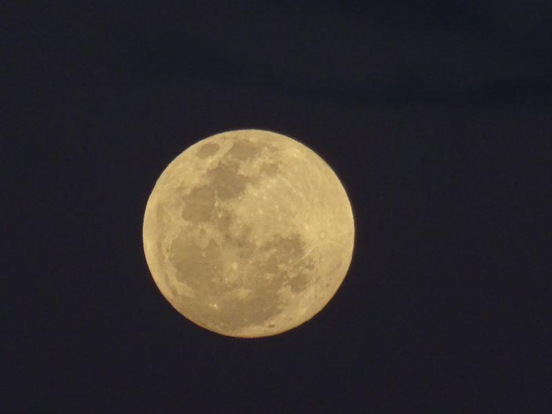Katy Alexander got this shot of moonrise over Clovelly, Sydney, Australia.