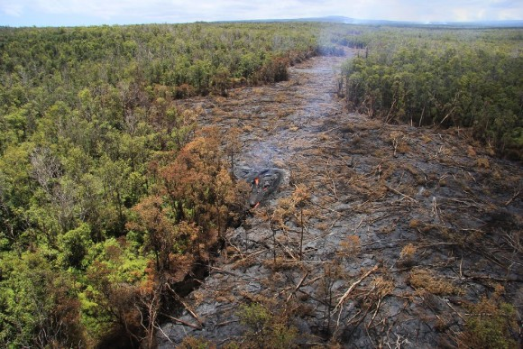 This September 1 photo shows the lava's path, already miles long.  Photo via Tim Orr and USGS