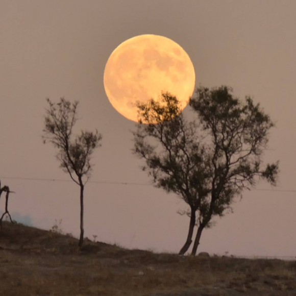 Super Harvest Moon 2014 by Annie Lewis
