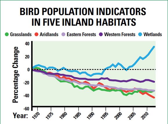 Image appears courtesy of the 2014 State of the Birds Report, U.S. Department of the Interior.