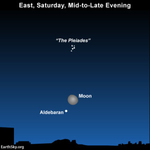 Tonight, on October 11, the moon is in the vicinity  of the star Aldebaran.
